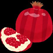 fruit_pomegranate